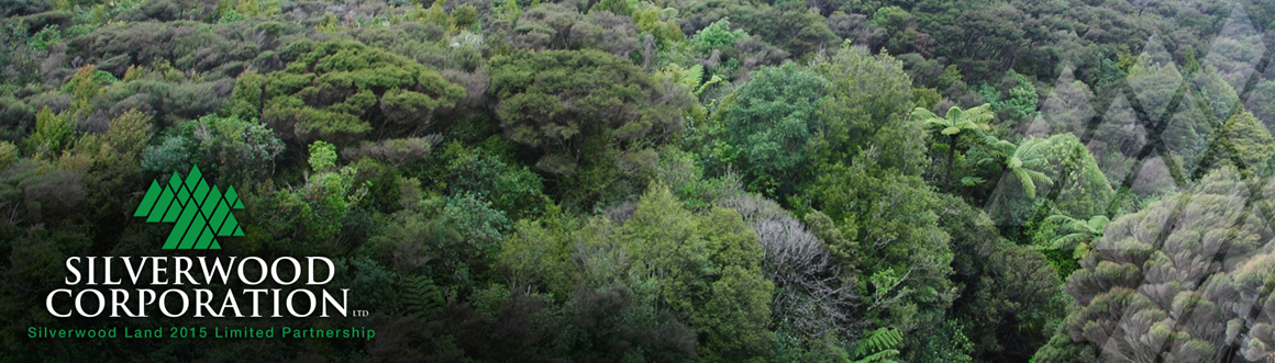 Silverwood Treetops